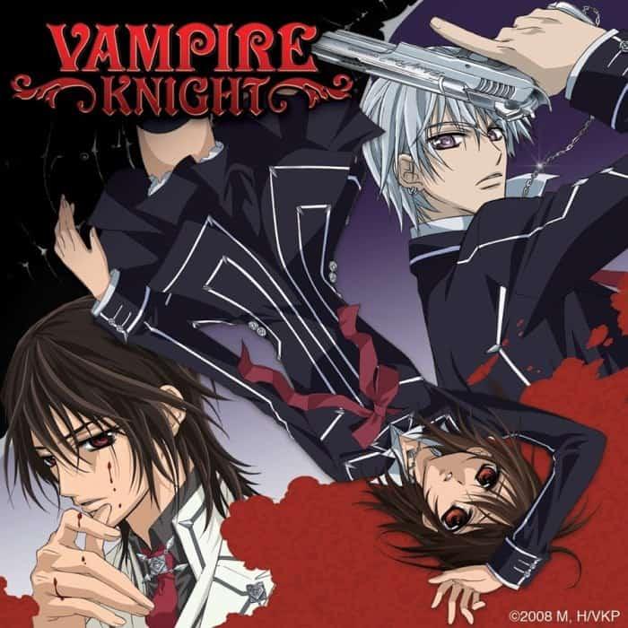Vampire Knight anime