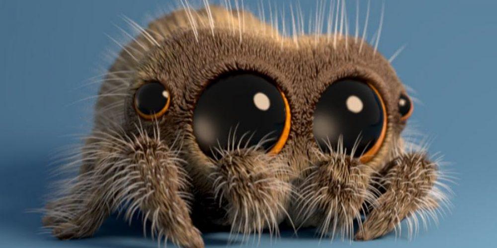 """""""Lucas the Spider"""" – uroczy pajączek, którypodbija internet"""